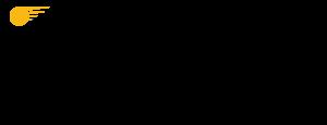 ivelocity-logo-blkmed